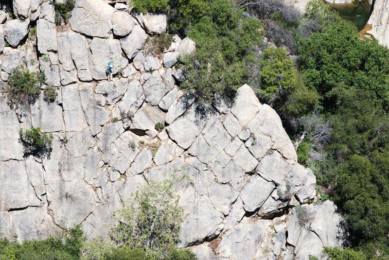 Rock Climbing Photo: A little gardening & trundling on Wall 1. (Photo b...