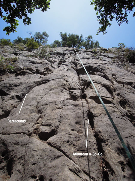 "Rock Climbing Photo: The crack systems for ""Barracudas!"" and ..."