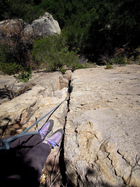 Rock Climbing Photo: It's much cleaner now than on the FA (the tree has...