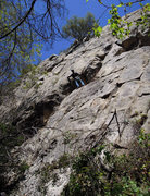 Rock Climbing Photo: Christian Maurer looking for the 5.9 out of so man...