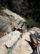 Rock Climbing Photo: Christian Maurer milking the chimney topout on the...