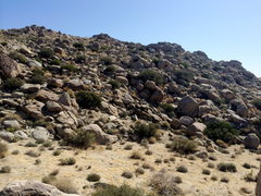 Rock Climbing Photo: The Field