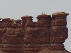 Rock Climbing Photo: TA-DA