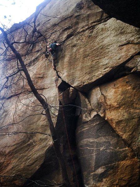Rock Climbing Photo: captain crunch, Rumbling Bald, NC