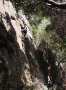 Rock Climbing Photo: Chris Wing doing some solo gardening prior to the ...