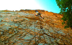 Rock Climbing Photo: Wic climbing a Modest Man from Mandrake.  This is ...