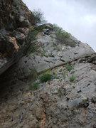 Rock Climbing Photo: Colleen warming up on Bibi