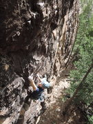 Rock Climbing Photo: TJ cruising on the opportunist.