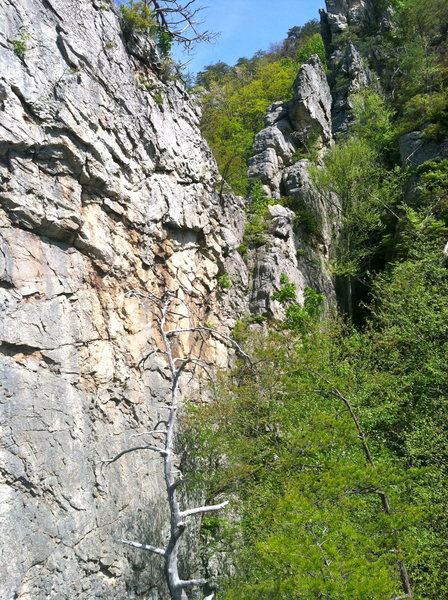 Rock Climbing Photo: The Alley. (from the top of Moon Rock.)