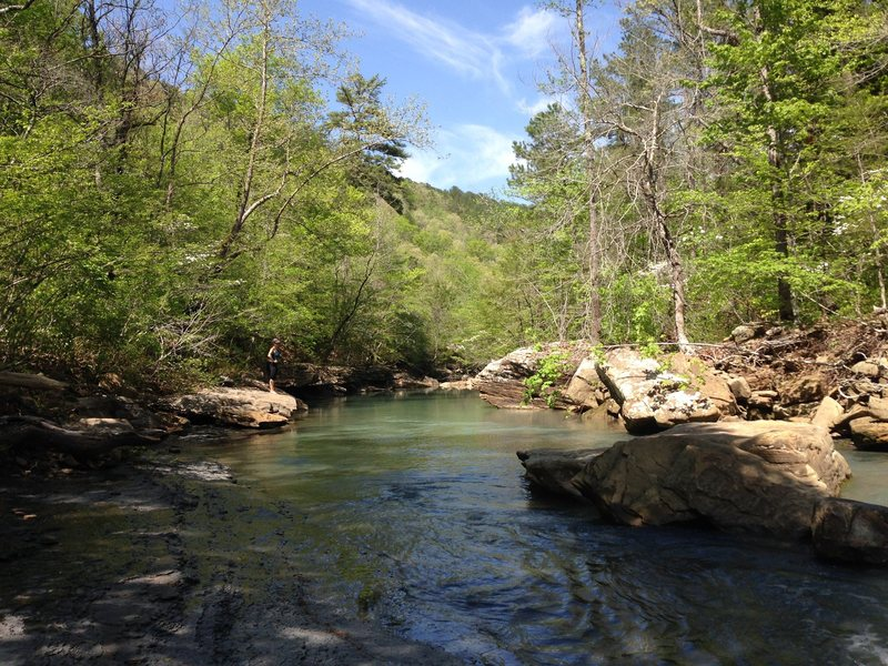 Beautiful Spring swimming spot near the parking area for Haw Creek East.