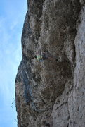 Rock Climbing Photo: In the Biz.