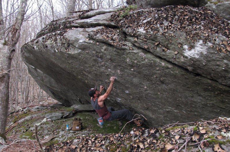 Rock Climbing Photo: Canis Dirus