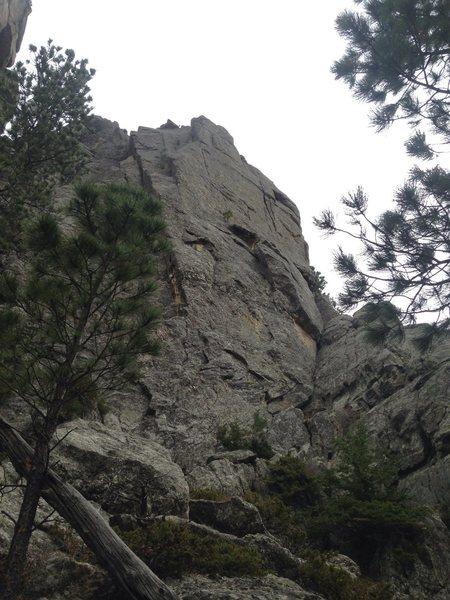 Rock Climbing Photo: Political Gamblers