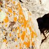 Microbial limestone Orange!