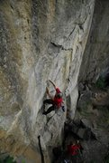 Rock Climbing Photo: Bill Coe climbing Blackberry jam, photo by Jeff Th...