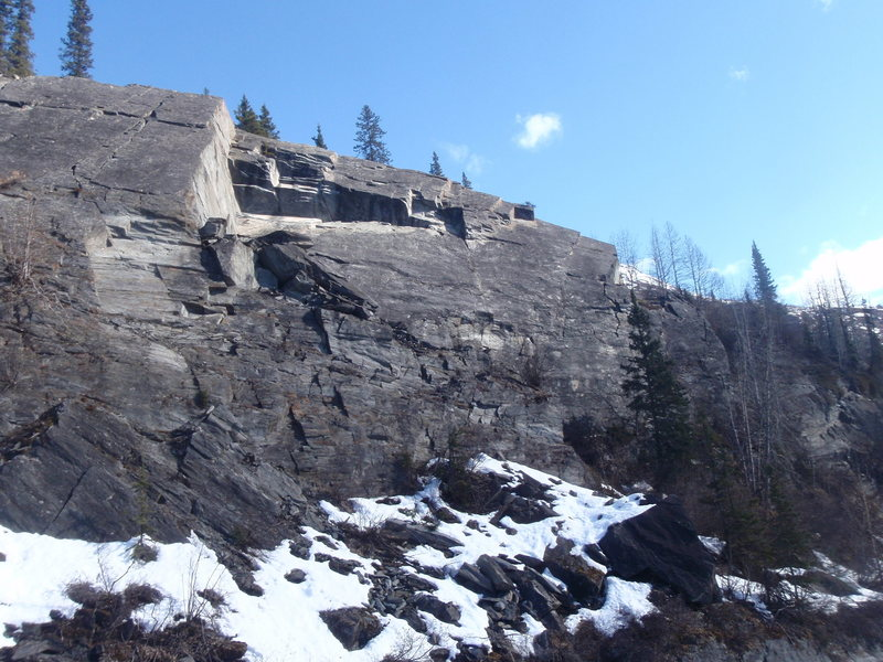 Rock Climbing Photo: This route is located behind the large spruce tree...