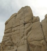 "Rock Climbing Photo: Knee Bar on ""Sail Away"""