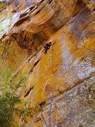 Rock Climbing Photo: Kevin crankin'