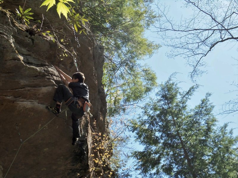 Rock Climbing Photo: Pulling the roof...