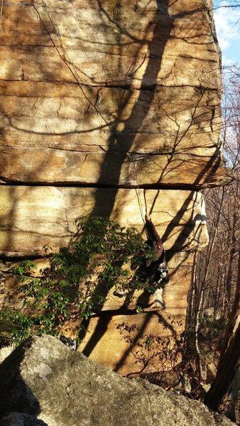 The slightly slanting vertical crack
