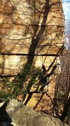 Rock Climbing Photo: The slightly slanting vertical crack