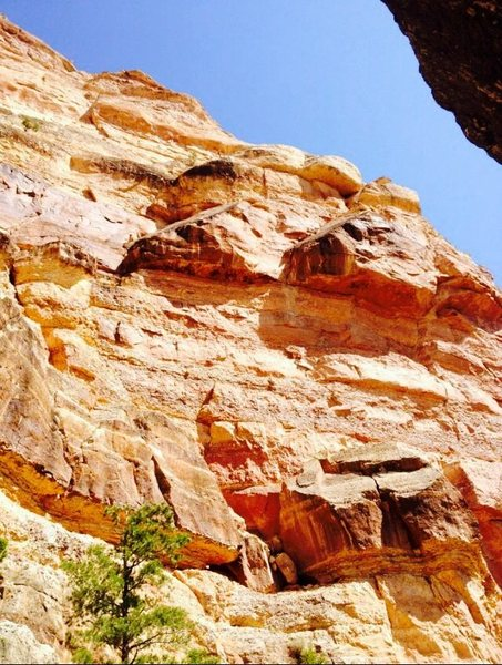 Rock Climbing Photo: Middle South Kaibab Wall.