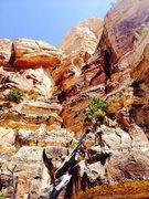 Rock Climbing Photo: Left South Kaibab Wall.