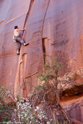 Rock Climbing Photo: Sean Nelb low on the route working on the changing...