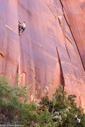 Rock Climbing Photo: Sean Nelb a bit higher on the route.