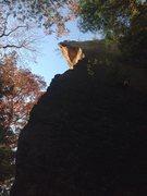 Rock Climbing Photo: Prime directive 11b