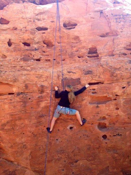 Rock Climbing Photo: Top roping Baby Swiss.