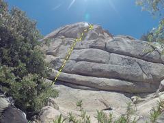 Rock Climbing Photo: Large Wooden Babies