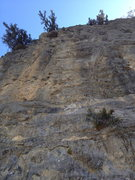 Rock Climbing Photo: The Hundredth Monkey