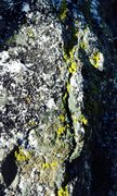 Rock Climbing Photo: Tahquitz Green!