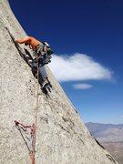 Rock Climbing Photo: Amy Ness leading P7, 5.10.