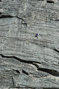Rock Climbing Photo: Patrick Haley on 'Fantasia'