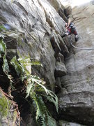 Rock Climbing Photo: Jack on Corner Crack
