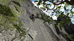Rock Climbing Photo: Wahoo