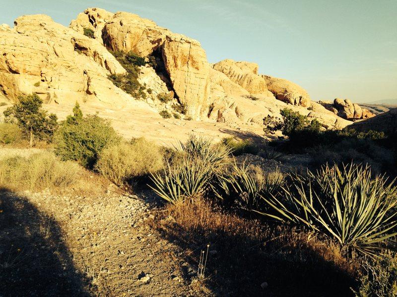Rock Climbing Photo: The Salt Factory