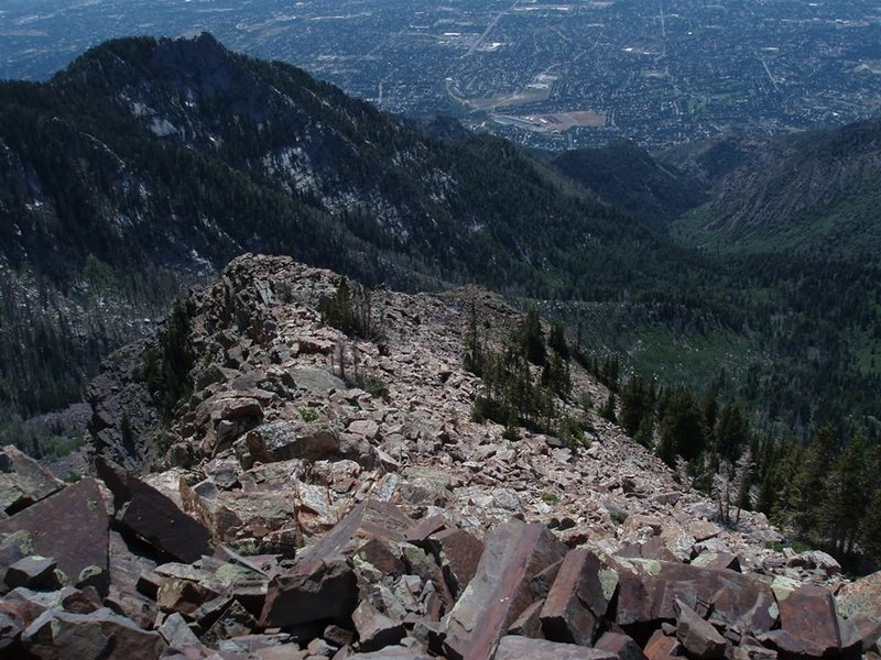 Looking down into deafsmiths from a ridge on twin peaks