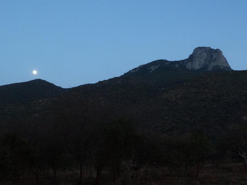 Mt. Longido