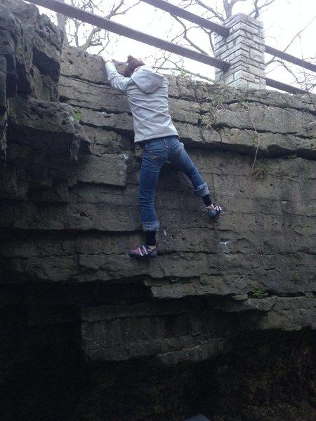 Lori getting near the top of Edible Berries.