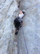 Rock Climbing Photo: Getting up on some glass of the 1st pitch of Centr...