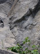 Rock Climbing Photo: Poison Ivy Crack