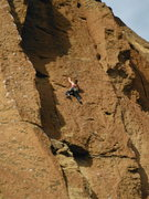 Rock Climbing Photo: smith rock in spring of 2013.