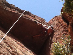 Rock Climbing Photo: Improbable move on Rat Race. Super fun roof!