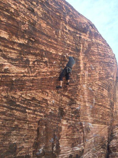 Rock Climbing Photo: Nick leading No Dogs Allowed, 05-17-2014. Setting ...