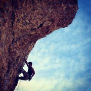 Rock Climbing Photo: Marley getting sendy