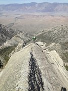 Rock Climbing Photo: The final summit ridge. Sweet!
