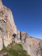 Rock Climbing Photo: Longs - RMNP, CO